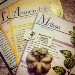 Alcune delle essenze dei saponi realizzati da Elisa e Veronica.