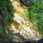 L'Eremo – dei Frati Bianchi – immerso nel bosco