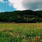 Piani di Monte Lago: una domenica ad alta quota…ma non troppo