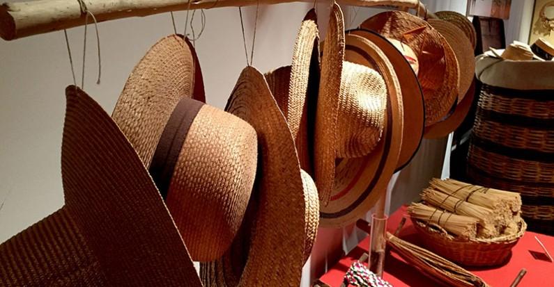 La iervicella: il grano che unisce cibo e moda