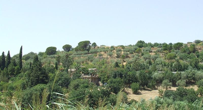villa-casale-20