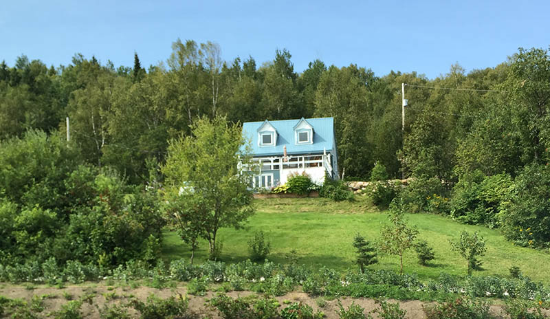 Ben noto Come sono le case in Canada? Immagini e curiosità sull'edilizia  IL19