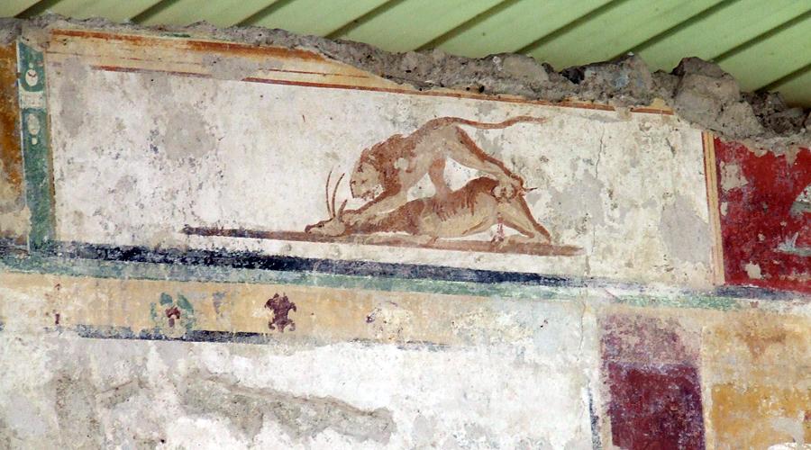 Una delle immagini più famose e belle del Criptoportico di Urbisaglia.