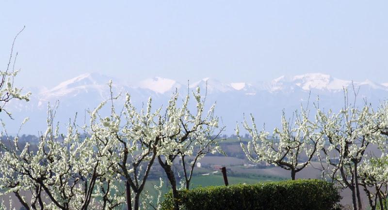 sibillini-primavera