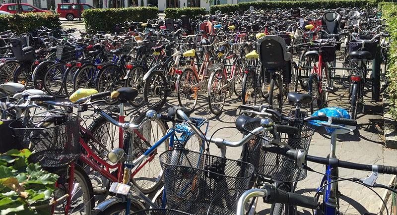 swedishLive bici