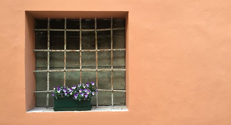 apiro_fiori