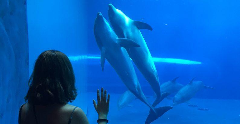 Racconti di marche travel blog for Blu di metilene acquario