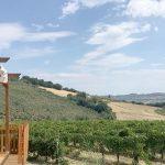 Moresco: itinerario di gusto tra ciauscolo e vino